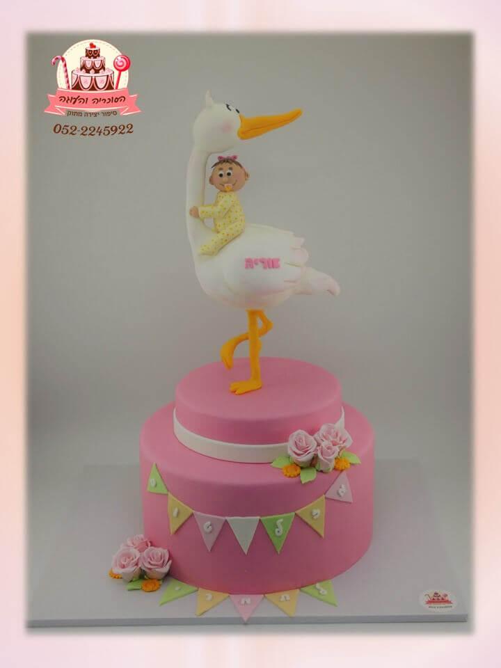 עוגה-מעוצבת-חסידה-ותינוקת