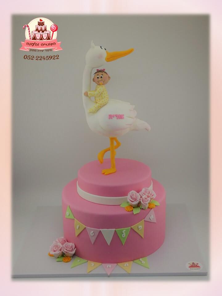 עוגת בצק סוכר לבריתה, עיצוב של חסידה ותינוקת ורודה - דורית יחיאל